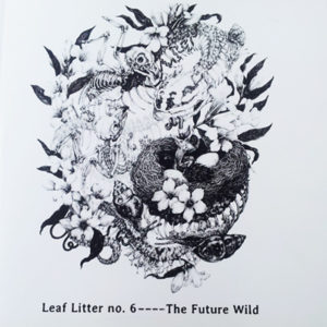 Leaf-Litter6-small